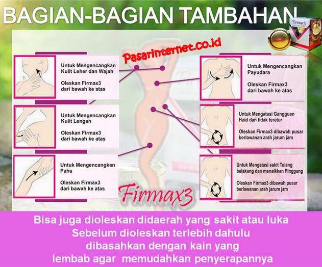Cara kerja firmax 3