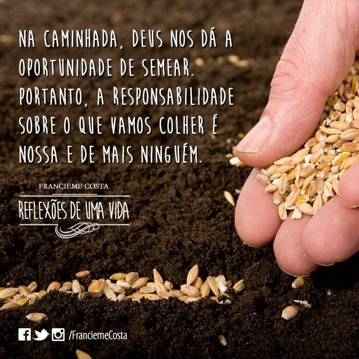 """Não adianta culpar o outro se quem plantou não foi ele.""""O que o homem semear, isso colherá (para o mal e para o bem). http://t.co/80zx2Y1M2D"""