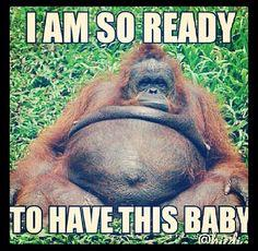 Vicki Bastin On Twitter 1 Week Overdue Hurry Up Baby Bowden
