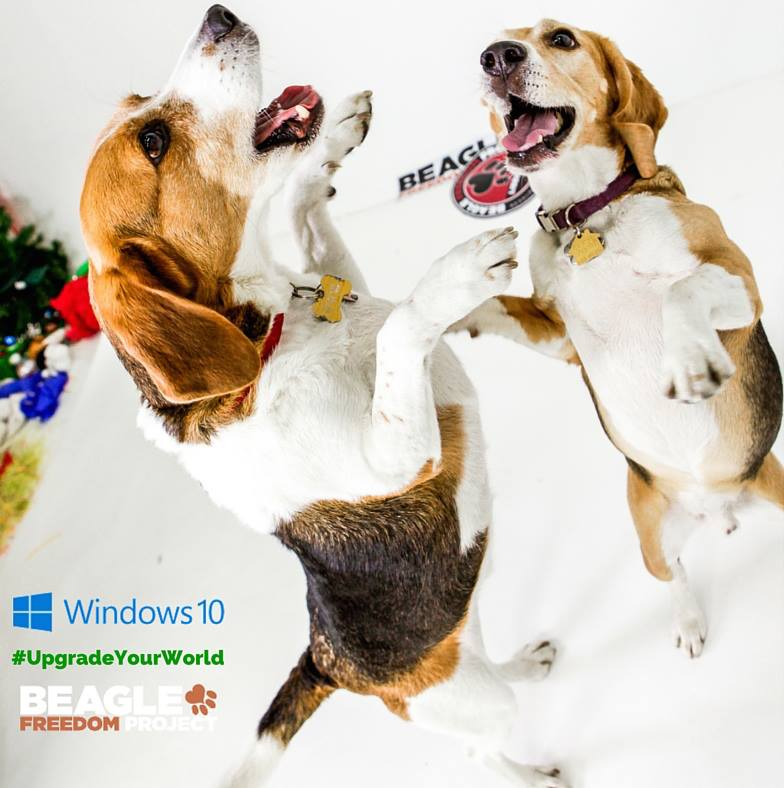 HIGH FIVE! ----> WE WON the $500K! Thank you all! Thank you @Windows! More: http://t.co/2ZqLcZKQJp #UpgradeYourWorld http://t.co/P0gRSL7lxO