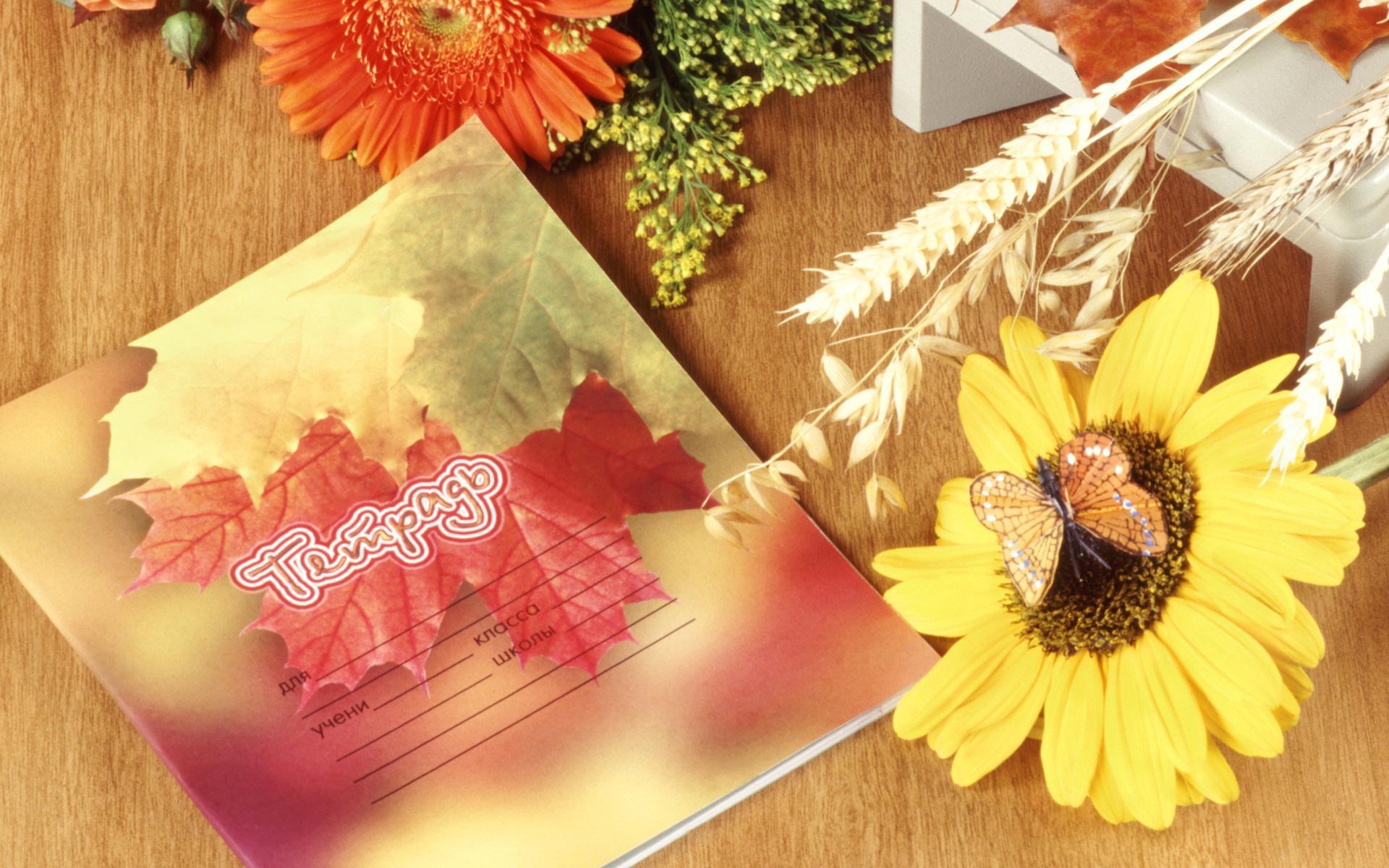С днем учителя открытка фон, открытку