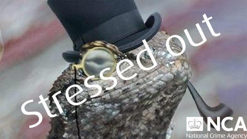 RT @WiredUK: National Crime Agency website offline after hacking arrests http://t.co/e4KMHjHixD http://t.co/2Q1SdJYczE