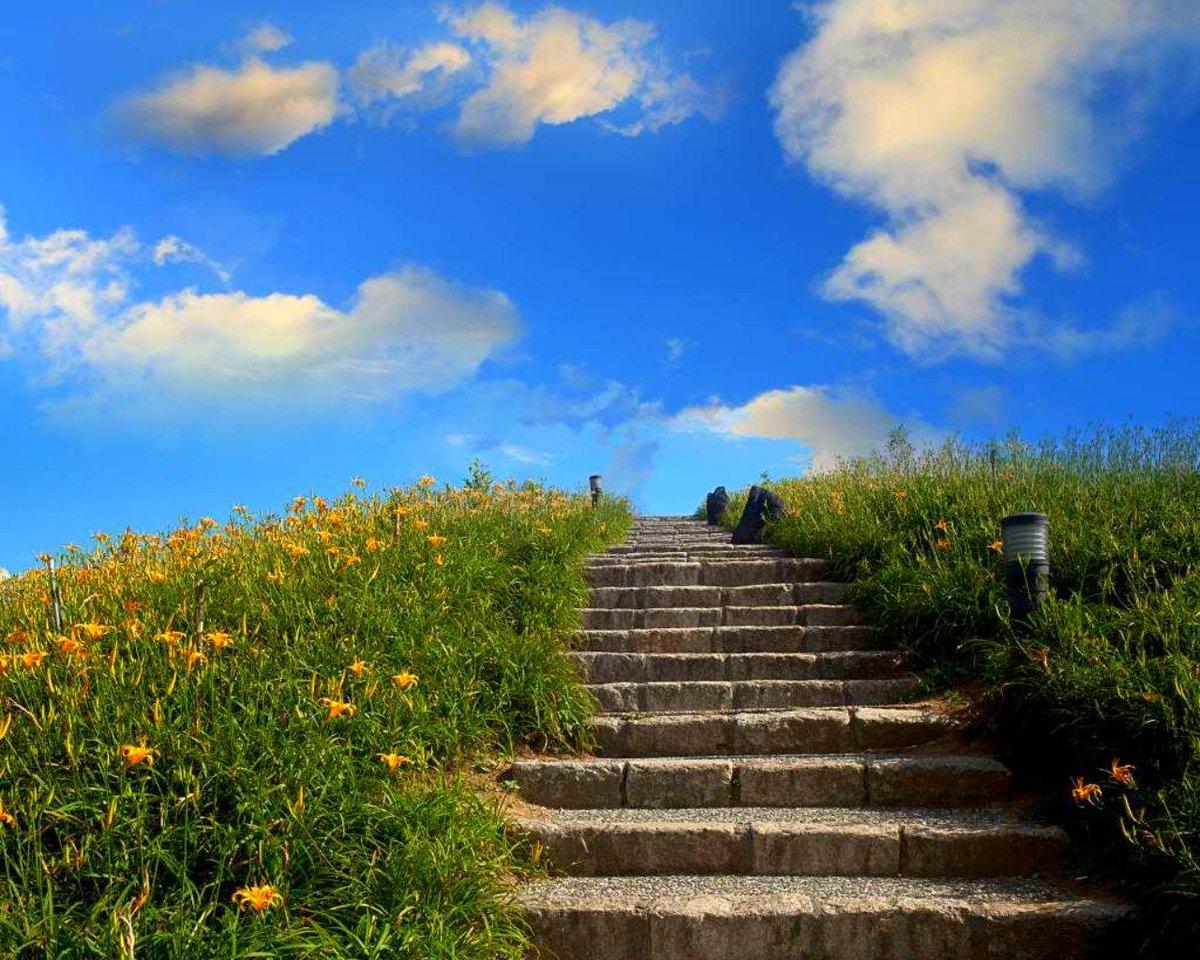 Картинки лестницы уходящей в небо