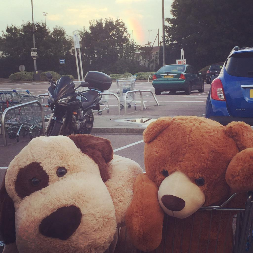 Random bear shop. I can see a rainbow 😊 http://t.co/4kxHGtLTpZ