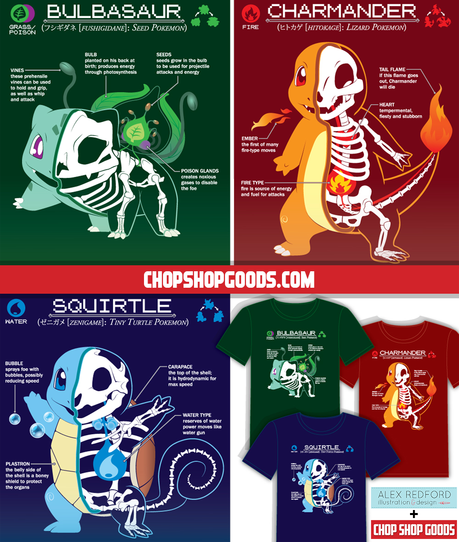 Alex Redford On Twitter The 3 Starter Pokemon Anatomy Shirts I