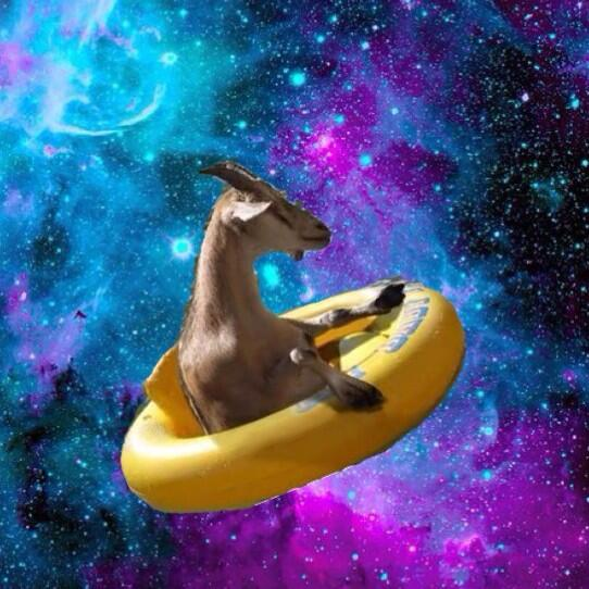 Space Goats (@ItsSpaceGoats) | Twitter