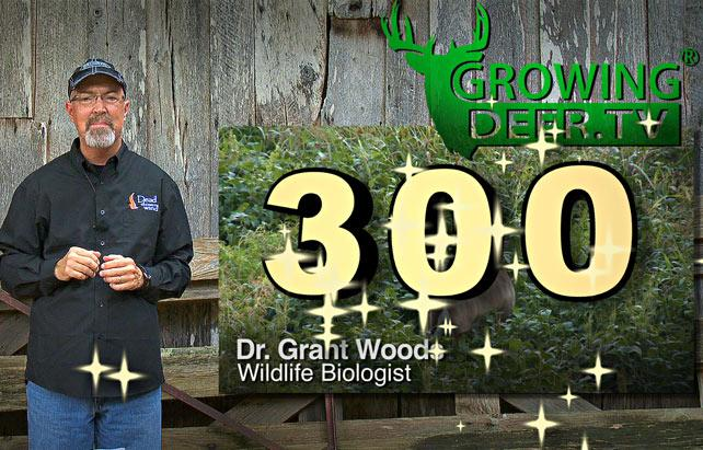 Watch @GrowingDeer's 300th episode here: http://t.co/cA1Si4NWIy #4mosthunting #hunting #treestandsafety http://t.co/xMxNA2cFvp