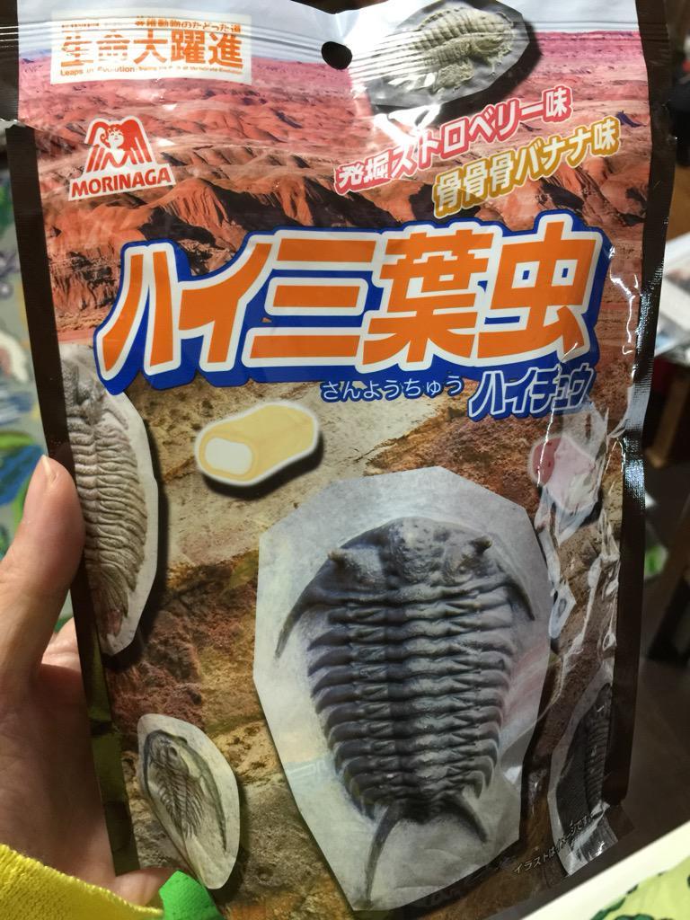 ハイサンヨウチュウ。発掘ストロベリー味と骨骨骨バナナ味 pic.twitter.com/Il6oT2fAdd