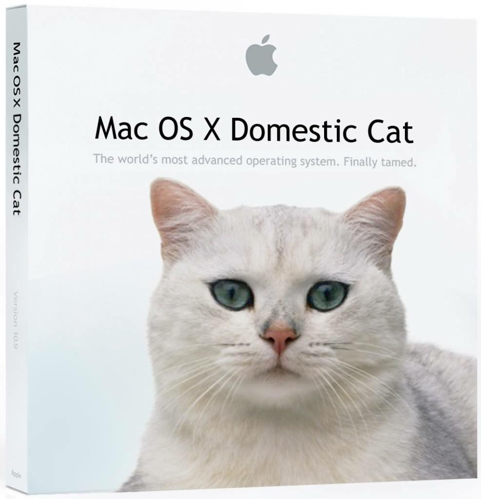 Hearing rumors from inside Apple about the next version of #OSX. ;) http://t.co/Bpb0tbRlwo