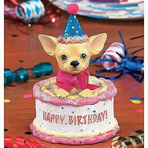 Incredible Epchihuahuas On Twitter Happy Birthday To Angela Olivas Funny Birthday Cards Online Unhofree Goldxyz