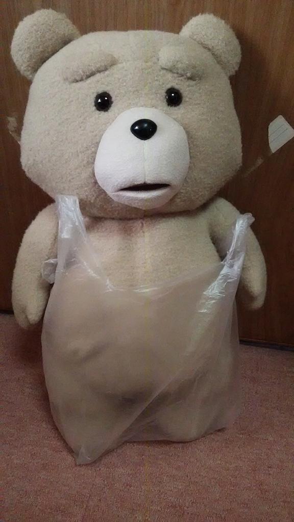 プリパラやりに行ったスーパーで偶然にも100円で取れたテッドさん。お店の人に「袋貰えますか?」って聞いて「これしか無いので。」と渡された袋が辱しめの刑かと思った。 pic.twitter.com/EF3ljQAPCu
