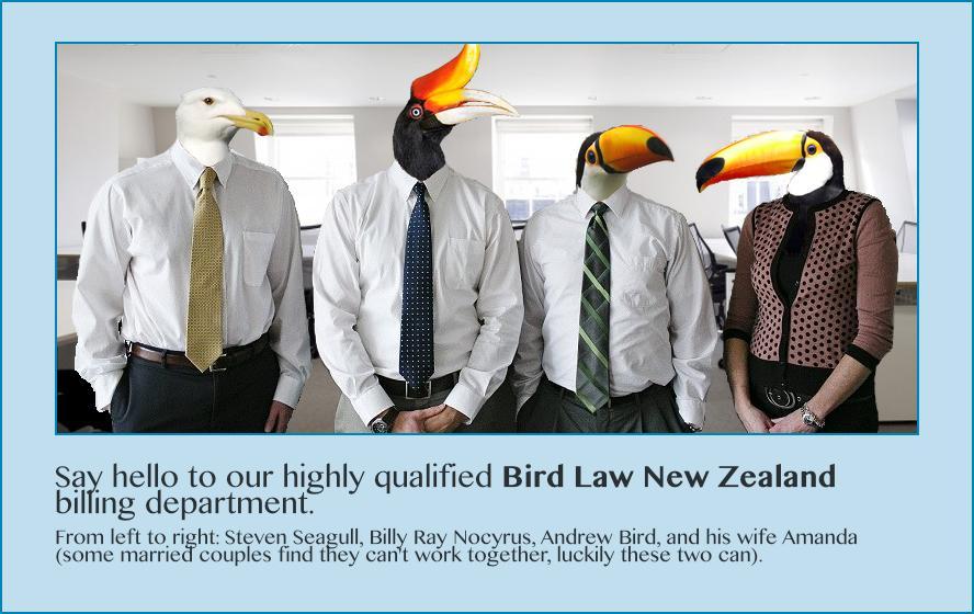 Bird Law New Zealand Birdlawnz Twitter Vocals day 2 is next week. bird law new zealand birdlawnz twitter