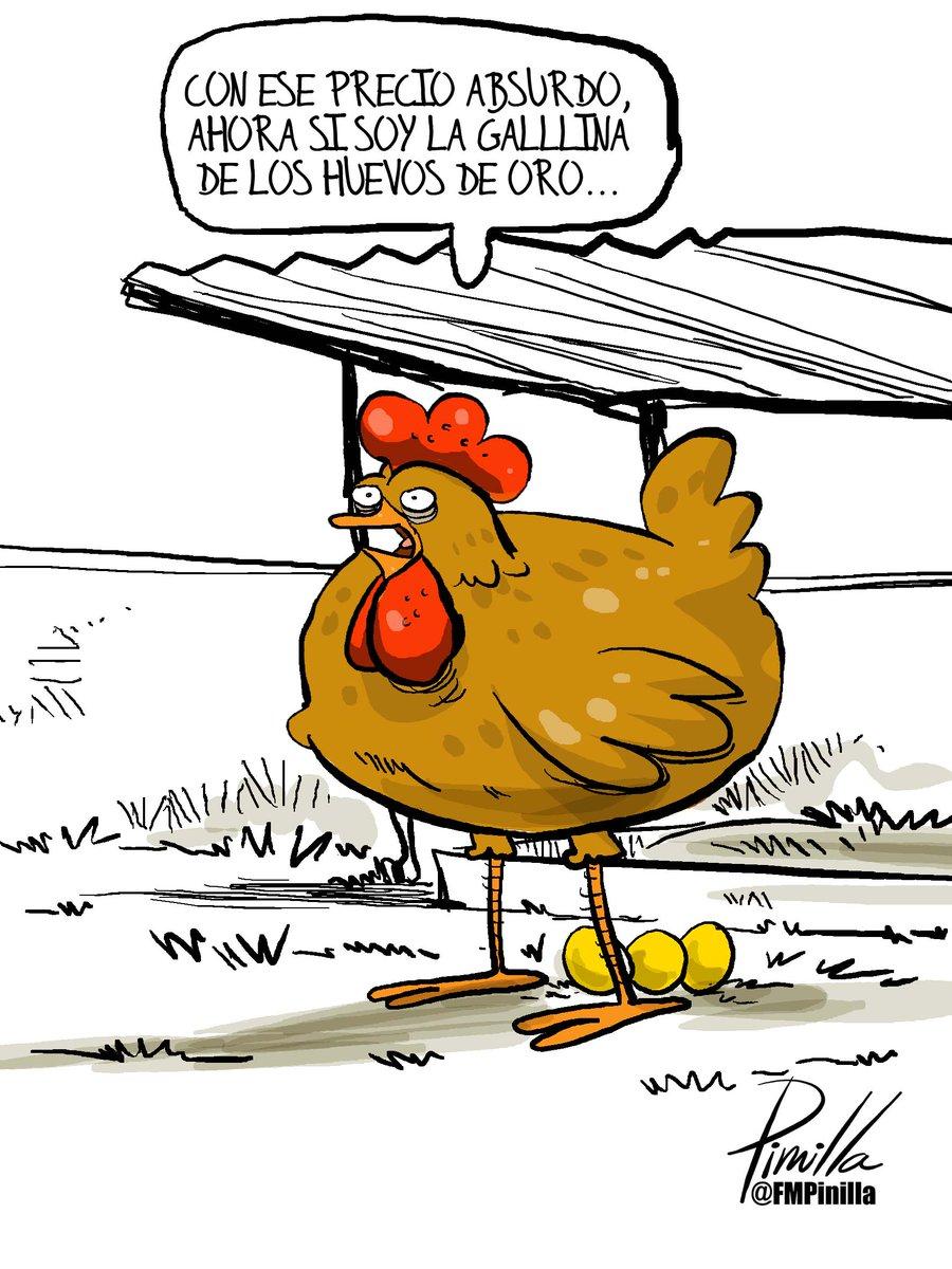 Fernando Pinilla On Twitter Caricatura Ahora Si Es La Gallina De