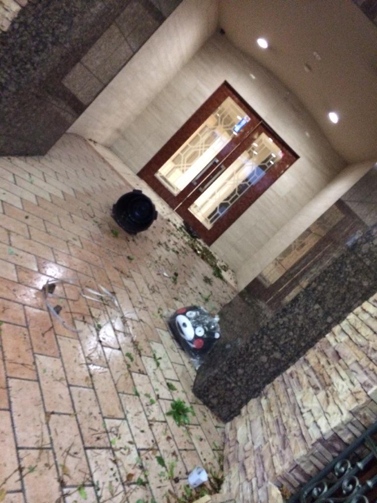 台風でマンションのロビーに思わぬ来客があった pic.twitter.com/SCwxEHZI7M