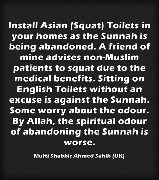 Image result for sunnah squat toilet