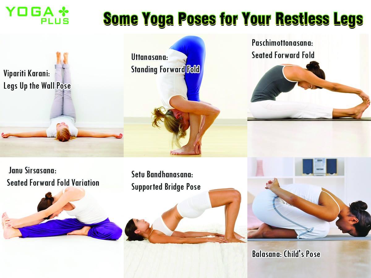 Yoga Plus on Twitter
