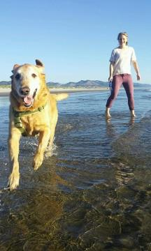 Dog with cancer gets first look at ocean http://t.co/9EpUWBmb4f #Local4 http://t.co/KDlWUJIXoa