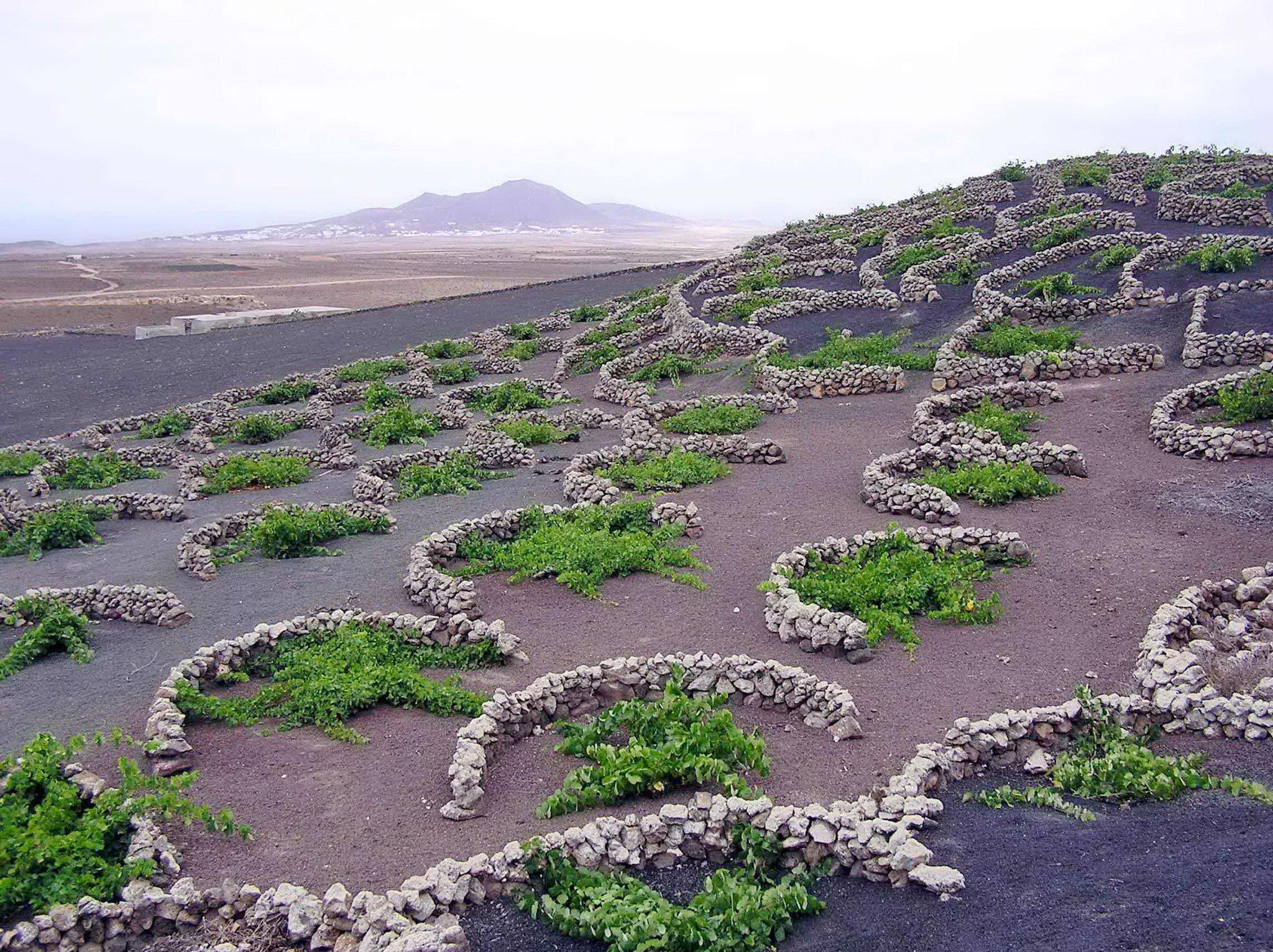 картинки про плодородие почвы возле вулканов перед законом