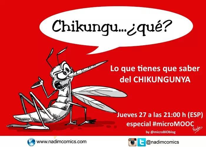 Thumbnail for Lo que tienes que saber de Chikungunya