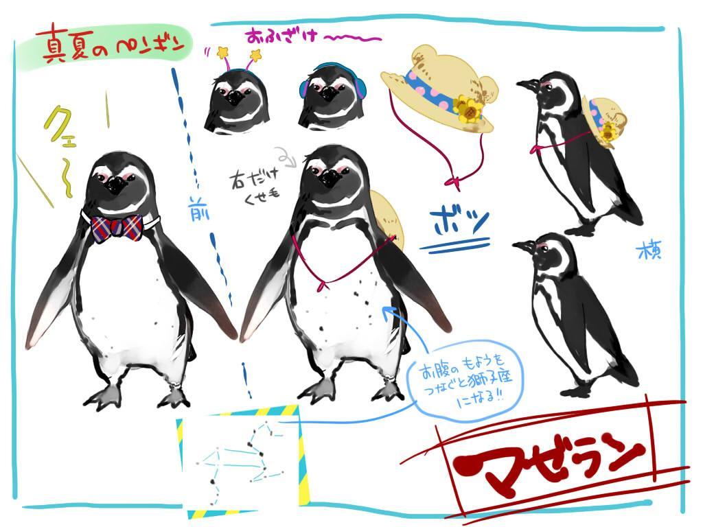 ☆ペンギン、舞い降りる☆ じくさんから貰ったよ! 陽「お、マゼラン、やったな☆じくちゃんから絵を貰えたから居残り決定だよ」 マ「クェ!」 陽「お前の腹の模様、獅子座なんだな~」 新「獅子の心を持つペンギンか…」 #強そう #陽ペン日記