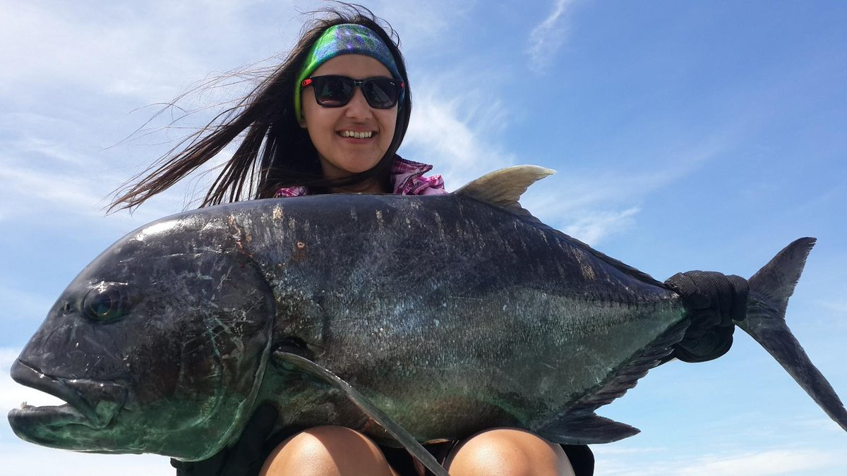 Download 8300 Gambar Ikan Gt Besar Terbaru