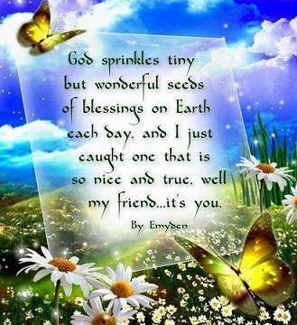 Blessing Sayings On Twitter God Sprinkles Tiny But Wonderful Seeds