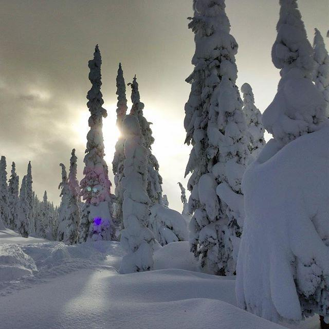 I wish I woke up like this! <<< its a #fullmoontakeover at @twsnow today