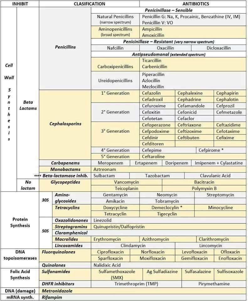 مـحـمـد السـرحـان No Twitter تقسيم جميل لكل أنواع المضادات الحيوية في صفحة واحدة منقول من صفحة الصيادلة Http T Co Tnwzvn96m2