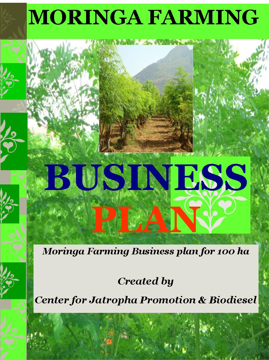 moringa farming business plan 100 ha