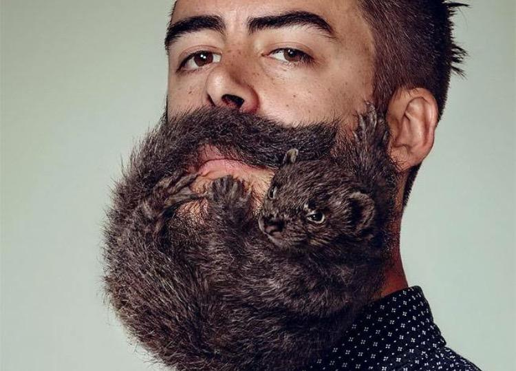 Tangleteezer On Twitter Get Your Beard Game Strong With Compact Groomer Http T Co G3dcmwwgj2 Http T Co J1gzvlco1l