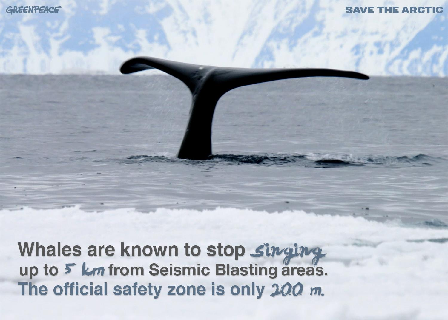 RT @savethearctic: Please don't stop the music - #StopSeismicBlasting Learn more, follow the link>> http://t.co/MZDw9BOfxN http://t.co/k0Xg…