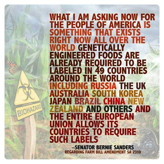 Thanks @BernieSanders 4 standing up 4 Labeling GMO's. Our right to know.  #sustainability #FeelTheBern #Bernie2016 http://t.co/vL62HYVy0k