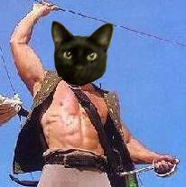 @OwenTheTonk @TheNascarKitty @RealFakeGator @TinyPearlCat Arrrrrr #BlackPaw #nipclub What say ye, Tommy? http://t.co/LjCvADzNzx