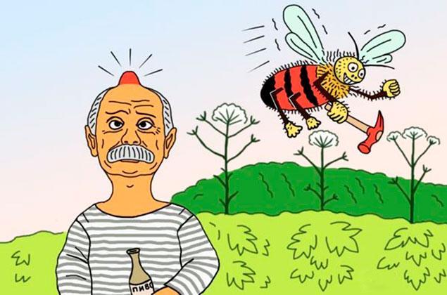 Картинки пчела и пчеловод прикольные