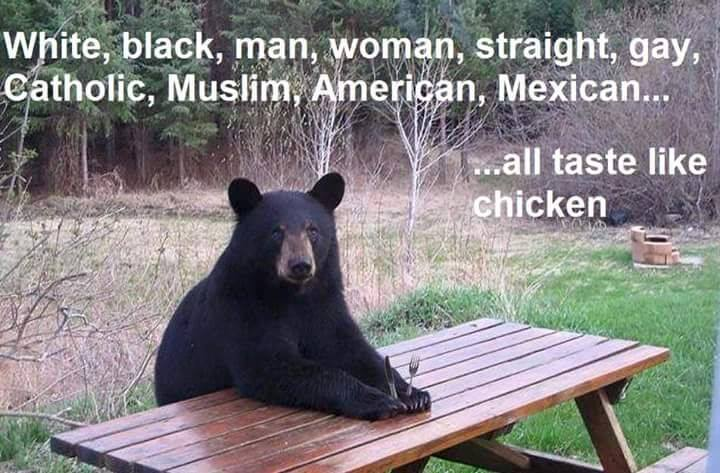Bear logic http://t.co/X6cmhhZ2rH