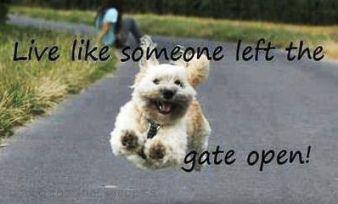 Happy Monday! http://t.co/iyZqyjZz5X