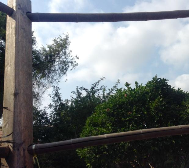 open fence in foreground with cloudy sky and tree tops visible through it