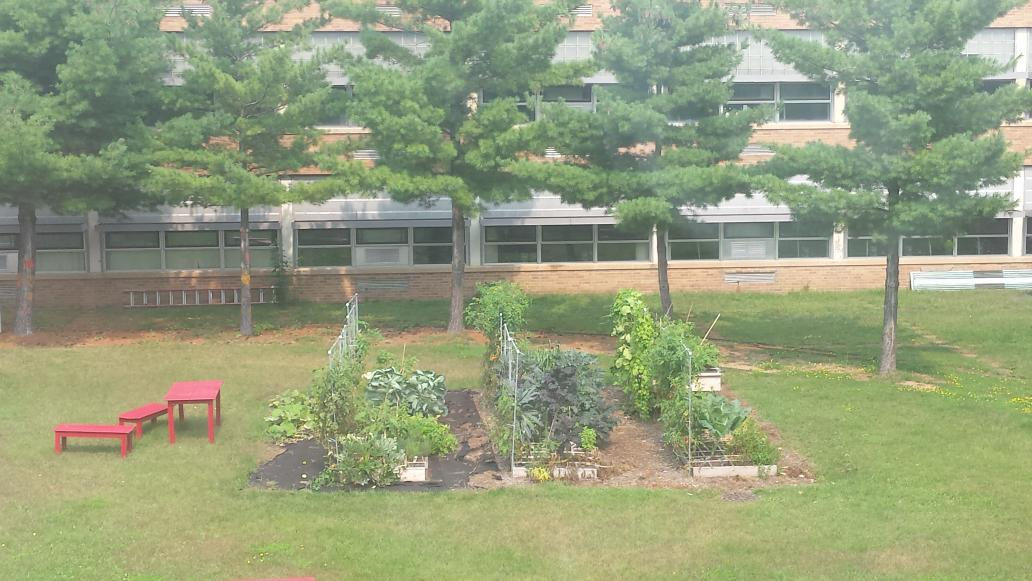 Looking at all the produce in the coutyard thanks to @catheller #legacy #SVStory http://t.co/V1ZWC79B87