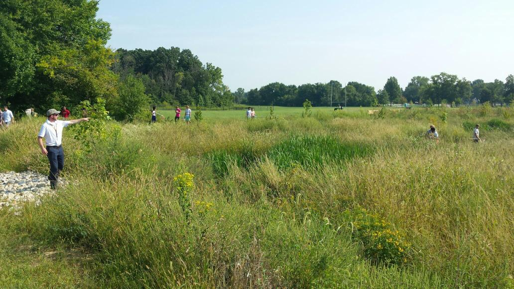 Ss were deep in the new wetland hunting for monarch butterflies #nahscommunity http://t.co/SFApeuZrFO