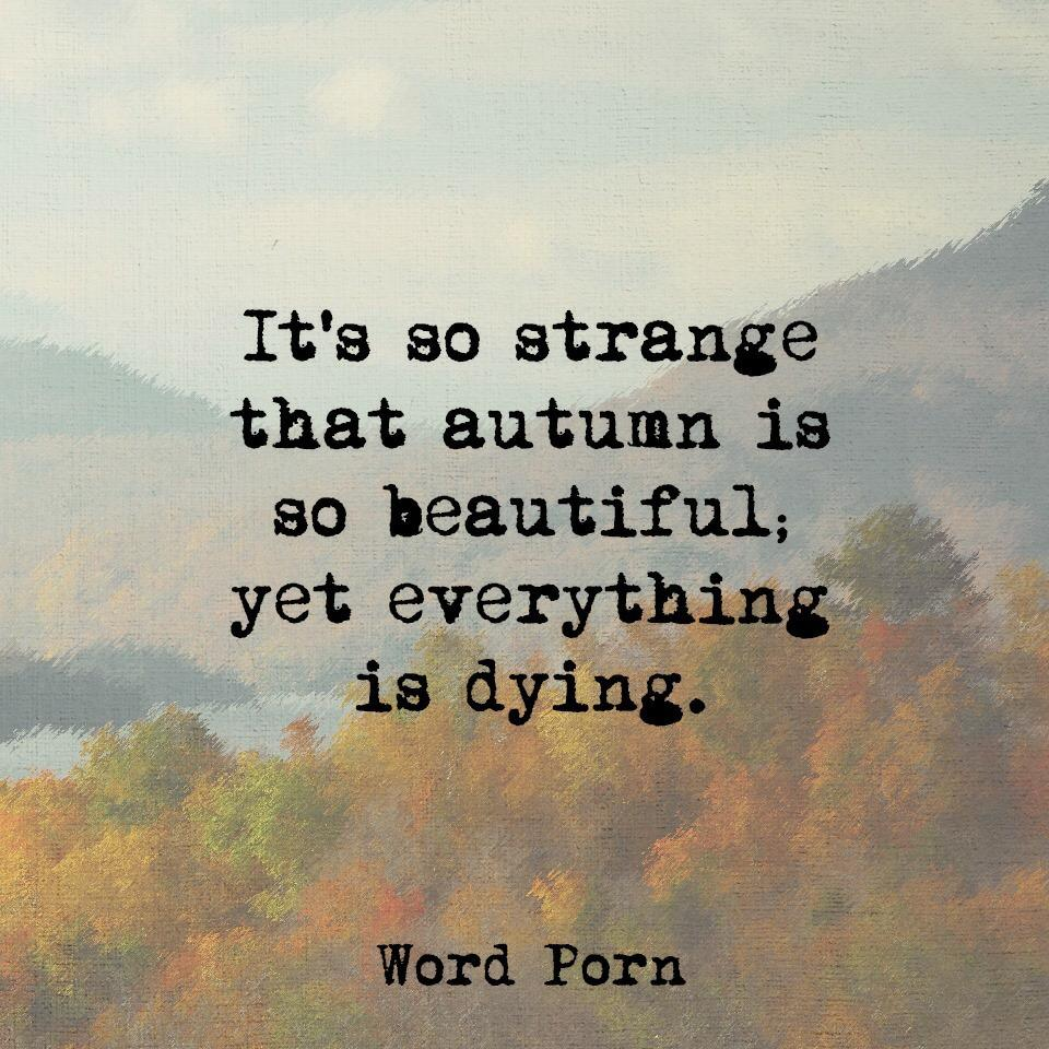 #autumn #life #words http://t.co/IIEZdl9nQE