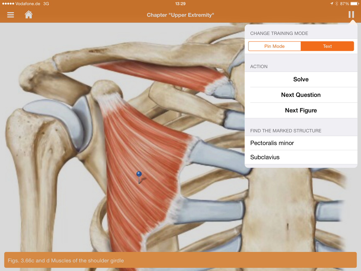 Sobotta Anatomy App on Twitter: \