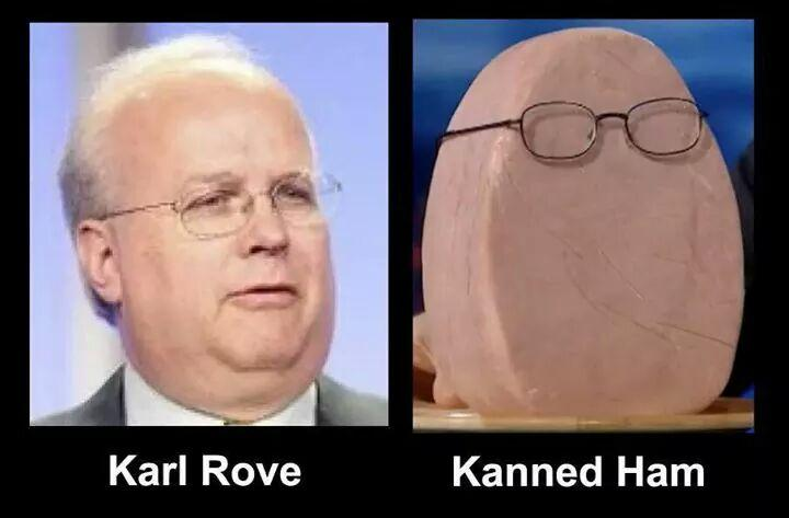 Karl Rove: Planned Parenthood shutdown a disaster