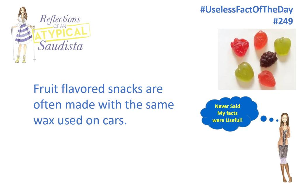 #uselessfacoftheday just lovely! @AtypicalSaudi http://t.co/VGBYb7HJ2V Instagram atypicalsaudista #uselessfacts http://t.co/UKsCZ1x0Dp
