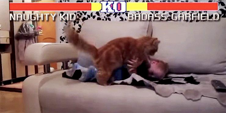 'Street Fighter: Cats Edition' – It's Possibly The Ultimate Gaming Combination As Cats Vs.… http://t.co/CPFmQS5DA5 http://t.co/NT8RVDSWG8