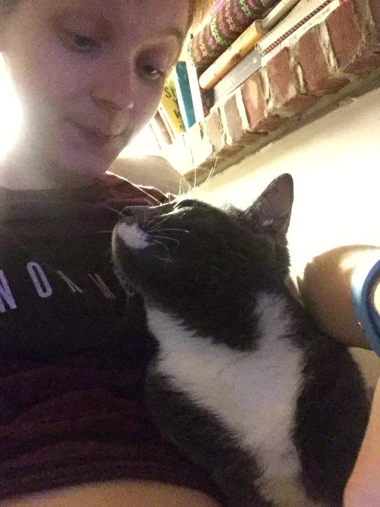 """16 Reasons There Should Be A """"Cat Owner Appreciation"""" Day"""