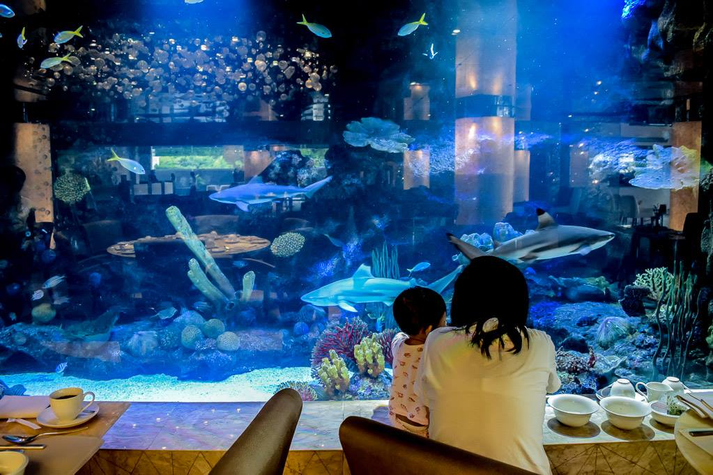 If you want the kids to be entertained the entire time you are eating, book this restaurant. http://t.co/BuJkKTNcia http://t.co/S7JFaEOuOl