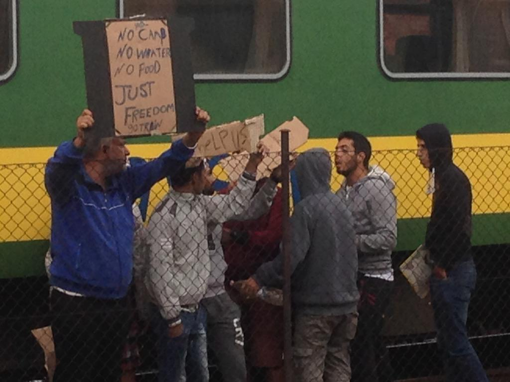 """No Camp, No Water, No Food"" reads sign held by #Syria-n #refugee outside train that was stopped in #Bicske #Hungary http://t.co/pMu6lqDs9X"