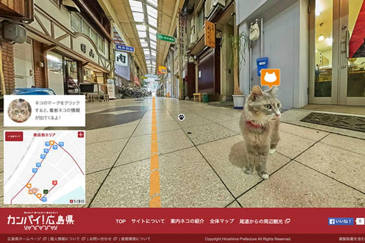 RT @WiredUK: Explore this Japanese town using cat street view http://t.co/25H2MQcJka http://t.co/ajGmW5Nd0p
