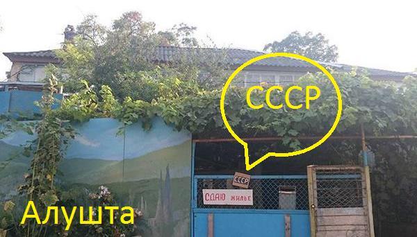 ОБСЕ зафиксировала факты системных и масштабных нарушений прав человека в Крыму - Цензор.НЕТ 8540