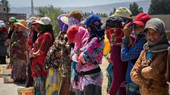 In Siria l'80% della popolazione vive oggi in povertà.
